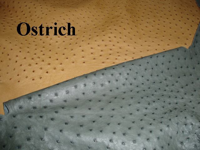 Ostrich Skin Seat Covers Velcromag